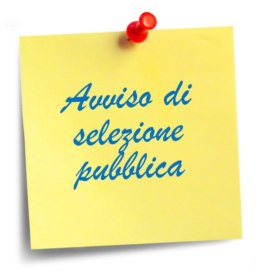 AVVISO DI SELEZIONE PUBBLICA | Comune di Controguerra